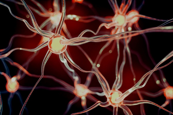 Brain injury neurons involving support